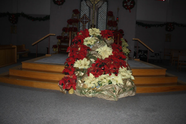 Nativity Arrangement at St. Anne's